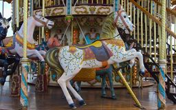 Carousel 3. Brightly painted fairground carousel horses stock images