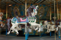 Carousel horse. On a moving merry go round Stock Photos