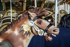 Carousel Horse. Close-up of a Carousel horse Stock Image