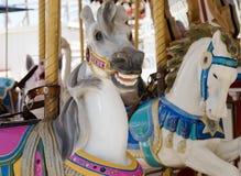 Carousel horses. At outdoor amusement park Stock Photo