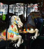 Carousel Horses Stock Images