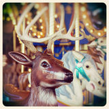Carousel instagram Royalty Free Stock Images