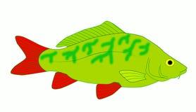 Carp Stock Image