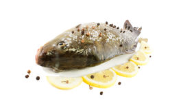 Carp. Mirror whole ( io L ) isolated on white background Royalty Free Stock Images