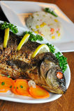Carp baked with vegetables Royalty Free Stock Image