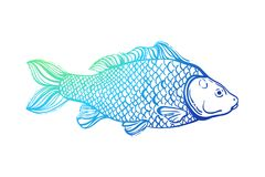 Carp. Chinese symbol of good luck, courage, persistence, perseverance, wisdom and vitality. Neon bright outline. Vector illustration Royalty Free Stock Photography