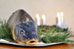 Carp and Christmas Stock Photo