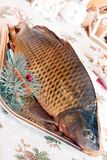 Carp and Christmas Stock Photography