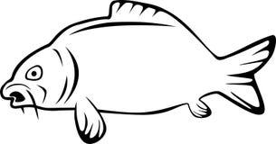 Carp drawn, fishing, carp and fish logo Stock Image