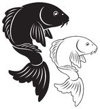 Carp. The figure shows a fish carp koi Royalty Free Stock Images
