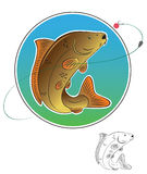 Carp fish. The figure shows the carp fish Stock Photography