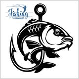 Carp Fish. Fishing Club Sign Or Emblem. Fisherman Sport Adventure Badge With Vector Logo. Royalty Free Stock Photo
