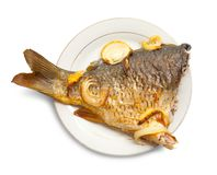 Carp fish  on the white plate Stock Photo