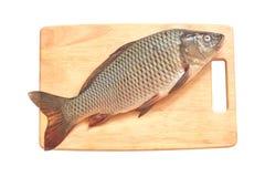 Carp fish on a wood. Fresh carp fish on a wood isolate stock images