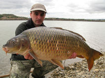 Carp fishing Royalty Free Stock Images