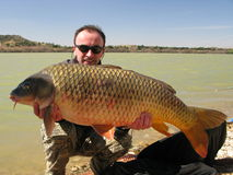 Carp fishing Stock Photography