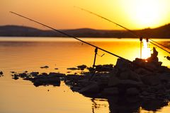 Fishing rods on the lake Stock Images
