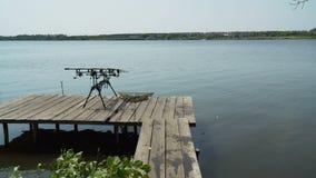 Carp fishing on pond stock video footage