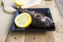 Carp grill. Carp roasted on the grill Royalty Free Stock Photography