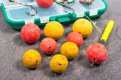 Carp Hook Boilies and Fishing Equipment - close up. Stock Photo