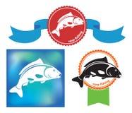 Carp icon Stock Image