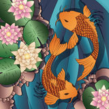 Carp Koi fish swimming in a pond with water lilie Stock Image
