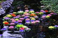 Carp Pond Artificial Water Lillies Shanghai