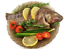 Carp roasted Royalty Free Stock Images