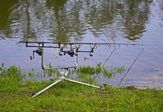 Carp rods Royalty Free Stock Photography