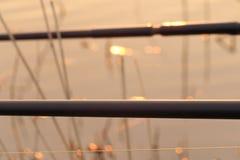 Carp rods at sunset Royalty Free Stock Photos