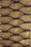 Carp scales. Green and gold texture leather carp Royalty Free Stock Image