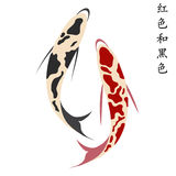 Carp, set of koi carps, red and black fish Stock Photography