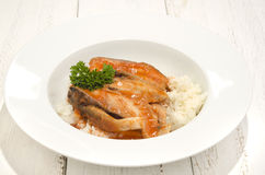Carp soup with cooked rice Royalty Free Stock Photos