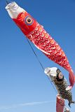 Carp streamer. This is a picture of carp streamers is decorated on the day of children Royalty Free Stock Photos