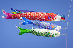 Carp Streamers. Colourful carp streamers or Koinobori flutter in the wind. The carp shaped wind socks are flown to celebrate Children's Day, a national holiday Royalty Free Stock Photography