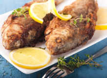 Carp with a thyme and lemon Stock Photography
