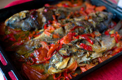 Carp and vegetables stew royalty free stock image