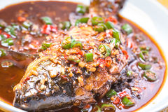 Carpa brasata con il peperoncino rosso e l'aglio Immagini Stock Libere da Diritti