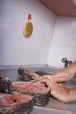 Carpa da estaca na cozinha Fotos de Stock Royalty Free