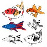 Carpa, peixe dourado, grupo de combate siamese dos peixes Ilustração do vetor Isolado no fundo branco Imagem de Stock
