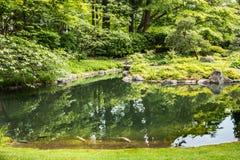 Carpa in Serene Green Lake Immagine Stock Libera da Diritti