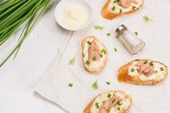 carpaccio kuchni doskonale stylu życia, jedzenie luksus włoski Bruschetta z tuńczykiem, cebulą i majonezem, Zdjęcie Stock