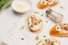 carpaccio kuchni doskonale stylu życia, jedzenie luksus włoski Bruschetta z tuńczykiem, cebulą i majonezem, Obrazy Royalty Free