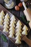 carpaccio kuchni doskonale stylu życia, jedzenie luksus włoski Ricotta surowy pierożek Zdjęcie Stock
