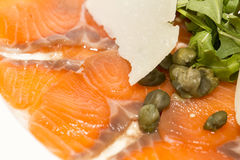 Carpaccio of salmon Royalty Free Stock Photography