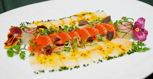 Carpaccio of trout and scallop Stock Images