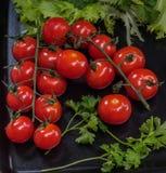 Carpal rouge de poing de tomates sur un plateau noir avec des brins de persil et de salade verts Photographie stock libre de droits