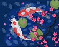 Carpas de Koi Ilustra??o japonesa do vetor dos peixes de Koi Goldfish chin?s S?mbolo de Koi da riqueza