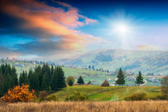 carpathian fotografia de stock royalty free