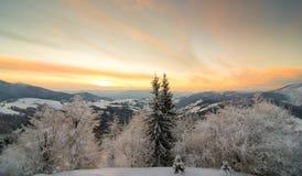 Carpathian afton Arkivfoton
